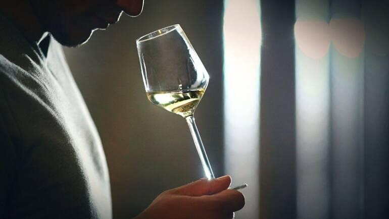 REFLEXIONES SOBRE EL VINO: el placer de degustarlo