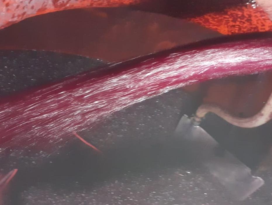 La fermentación alcohólica